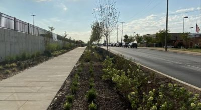 Baltimore Business Journal photo of andscaping has been added to the new Collective at Canton shopping center